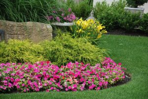 Landscaping Service Coppell TX