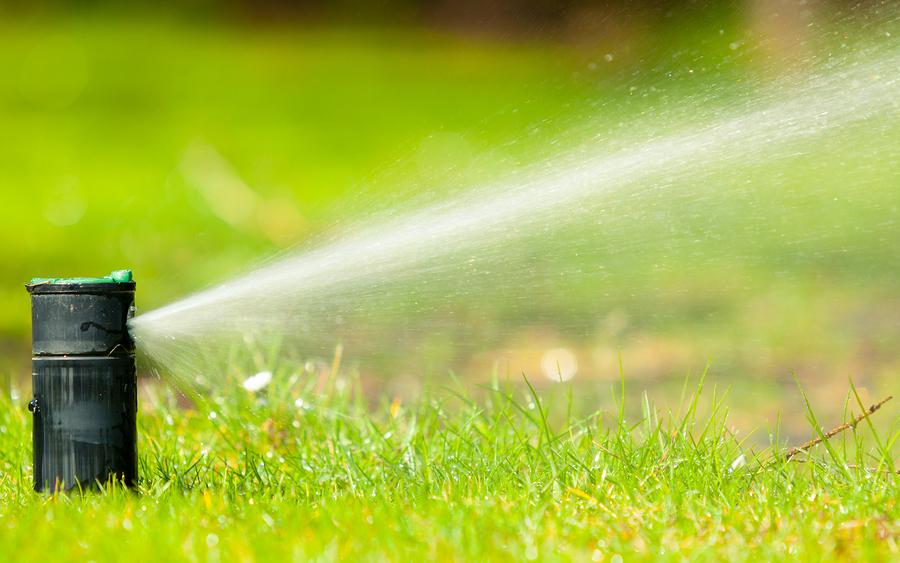 Keep Your Grass Green