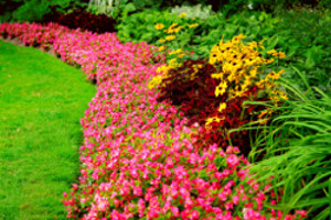 Spruce Up Lawn Seasonal Color Installation