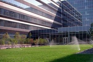 General Landscape Maintenance vs Commercial Landscape Maintenance