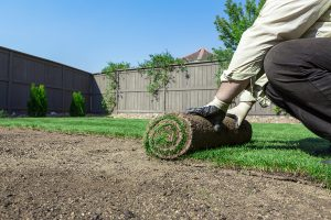 landscape installation services fort worth, tx